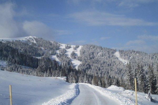 dievierjahreszeiten-winter-umgebung-3